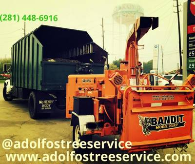 We offer quality lot clearing and grading services in Houston, TX. Clearing or grading proposals may need to be reviewed, and a permit may be required before moving land in  Adolfo's Tree Service best Houston number #1 service jrp tree professionals mulch demolition