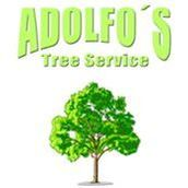#1 Houston Tree Service & Stump Grinding | Adolfostreeservice.com